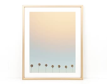 Palm Tree Print, Beach Photo, California Photo, Beach Wall Art, Palm Tree Photo, Large Wall Art, Photo Print, Coastal Art,