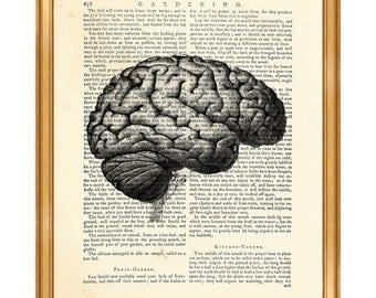 Anatomy Art, Anatomy Gift, Anatomy Print Human Brain Dictionary Art Print Medical Wall ArtAnatomy Poster Gift For
