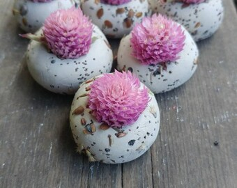 100 seed bombs light pink gomphrena, wild flower seed, save the bees,   wedding favour, thank you, baby shower