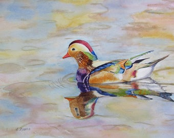 Wood Duck watercolor original duck painting colorful bird 9x12