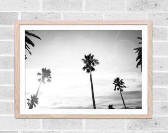tropical decor black and white home palm tree print beach art print black and white photography decor coastal tropical wall art photography