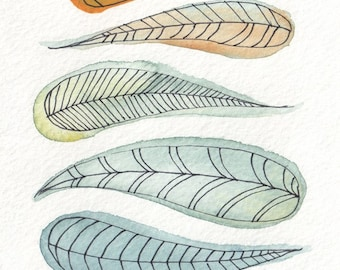 Feather Color Study - Fine Art Print