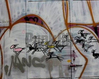 Print of Street Art in Europe Graffiti Drawing Horses Photographed Fine Art Photography