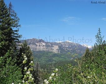 San Juan Mountains, Colorado 8 x 10 photograph