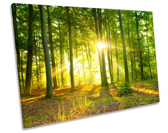 Sunlight Forest Trees Sunset Boxed Framed CANVAS WALL ART Picture Print