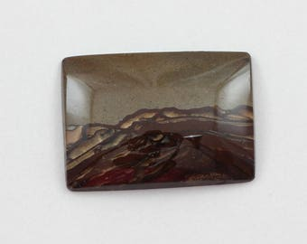 Picture Jasper Cabochon 25x35 Rectangle Deschutes Oregon Biggs Jasper L22 Vintage Hand Cut Agate