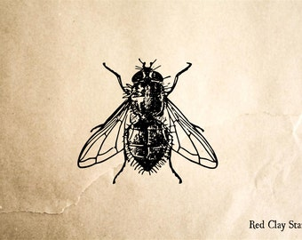 Big Fly Rubber Stamp - 2 x 2 inches