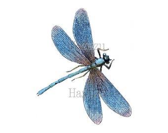 BLUE DRAGONFLY PNG clip art iridescent  digital stamp instant download collage journal scrapbooking
