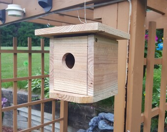 Eco friendly Bird House