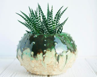 Air plant holders - Modern Ceramic Planter – Succulent Planter – Cactus Pot - Plant Holder- Cactus Planter- Plant Pot - Succulent Pot