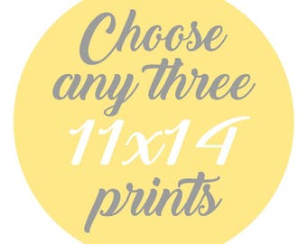 SALE - Mix and Match - Create Your Own Set - Choose Any Three 11x14 Inch Prints for 45 Dollars - You Choose The Prints and Colors