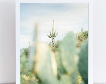 Cactus Art, Photography of Saguaro Cactus, Pastel Green and Blue Southwestern Desert Decor, Saguaro Cacti, Arizona Desert Photo, Light Green
