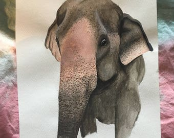 Asian Elephant Watercolour Painting