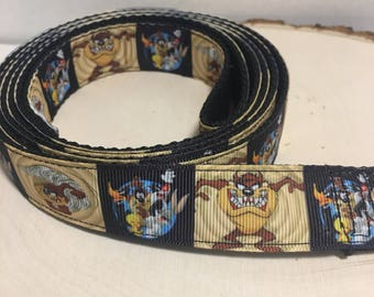 video game themed Dog leash