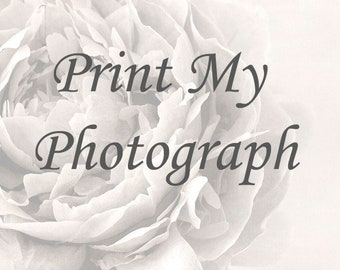 Print of Any Photograph in My Shop