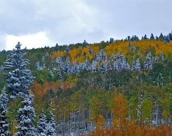 """Fall Photography print Colorado San Juan mountains snowy cloudy day aspens """"San Juan Fall"""""""