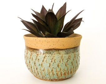Ceramic Planter - Succulent Pot  - Cactus Planter - Wheel Thrown Pottery - Stoneware