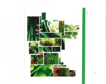 Minnesota Veggie Mosaic Card