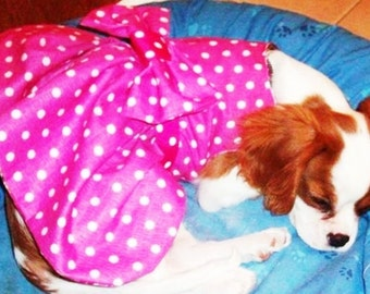 Pink or Turquoise Polka Dot Dog Dresses