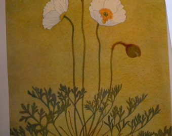 Botanical Print - Pavot des Alpes - Flower Lithographs Alpine flowers - glacial - Aconit - framable flower prints - alpine beauties