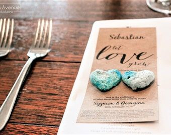 Wedding Place Card, Australia, Native flower Seed Bomb, Favors, Bomboniere, Wedding Favor, Wedding Stationary