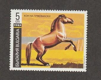 PRZEWALSKI'S HORSE Postal Stamp Bulgaria