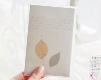Leaf Letter Set