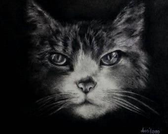 Art Print Pet Portrait Tabby #2