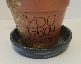 Metallic Indoor Plant Pot