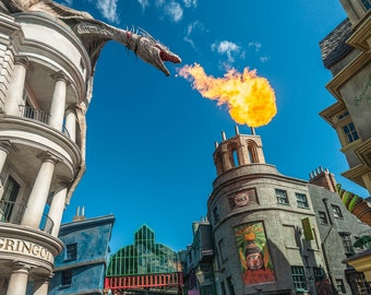 """Harry Potter Scary Burning Torch - """"Dragon Flame"""" - Fine Art Color Photograph   (9.5"""" x 13.25"""" Print on 14"""" x 18"""" Archival Board)"""