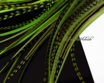 Rooster Feathers Dyed Green Hair Feathers 10 Green Feather Extensions Green Hair Accessories Long Green Feathers for Crafts