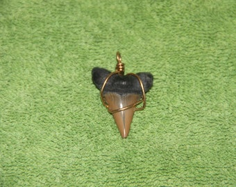 SHARK TOOTH Pendant Necklace (ONE) Option 1 - Brown, Option 2 - Gray Grey