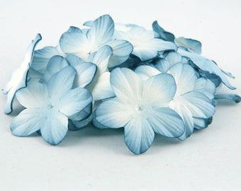 Dusky Blue Blooms Pbc134