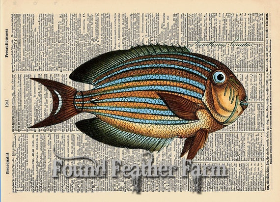 "Vintage Antique Dictionary Page with Antique Print ""Colorful Ocean Fish"""