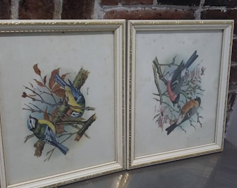 Pair of White and Gold Picture Frames with Glass