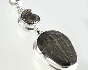 Trilobite Sterling Silver Pendant with Promicroceras Ammonite