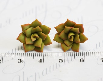 Green Succulent Earrings Polymer clay succulent Stud earrings. Polymer clay jewelry Miniature Plant Earrings Post. Wedding Succulent Jewelry