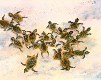 Turtles to the Sea baby sea turtles scramble toward the ocean- Sea Turtle Painting