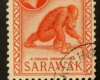 Young Orang Utan Sarawak -Handmade Framed Postage Stamp Art 12167