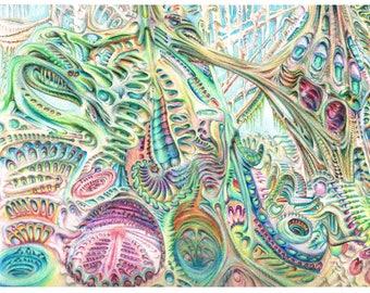 "Fine Art Print - Living Landscape colored pencil illustration 8.5"" x 11"""