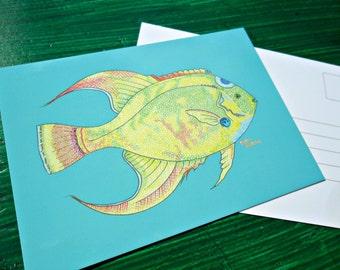 Postcard Blue Angel Fish Animal Art