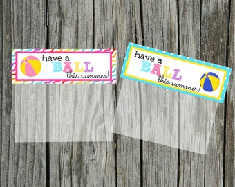 INSTANT Download Have a Ball this SUMMER Goodie Treat Bag Topper  PRINTABLE Download - Fun Family Party diy