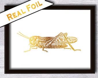 Real foil print Grasshopper print Grasshopper real foil poster Grasshopper art decor  Animal art print Home decoration Kids room decor G25