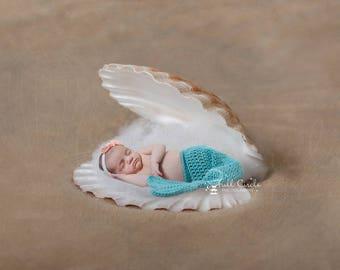 Newborn digital Backdrops/Props (Newborn Photography Prop. Newborn Digital Prop. Sea Shell, Clam Shell) Digital Download