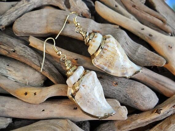 Conch Shell Earrings Genuine Natural Strombus Urceus Strombidae Gold Plated Dipped Seashell Sea Shell Earring Earrings Ear Hooks