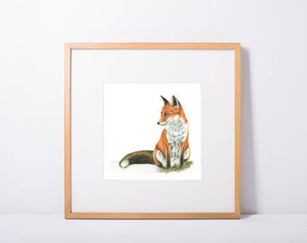 Mr Fox - Limited Edition Giclee Print