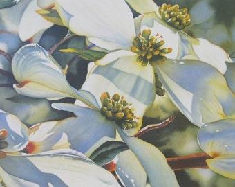 Dogwood - Watercolor Art Print - Floral Art Prints