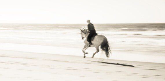 BEACH RIDING. Tarifa, Horseriding Print, Travel Photography, Horse Print, Sepia Tone Print