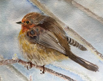 Red robin bird. Original watercolor painting.