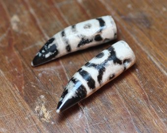 Black and White Tooth Beads Tusk Tribal Pendant Beads